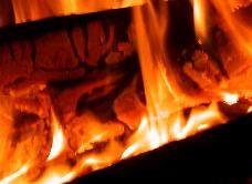 Оптимальное топиво для камина - дрова, каменный уголь, антрацит